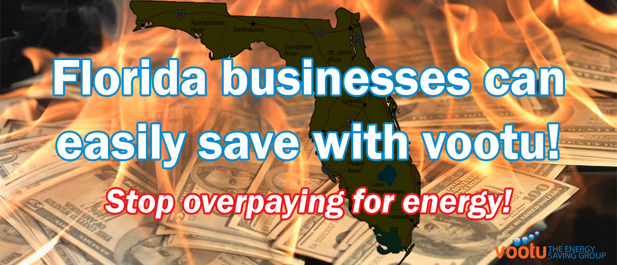 Florida Businesses Can Easily Save with Vootu!